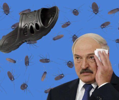 До чого призведе «капцевий» протест у Білорусі